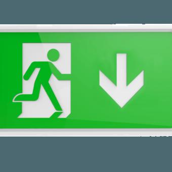 Manot Emergency Exit Bulkhead – Available Now!